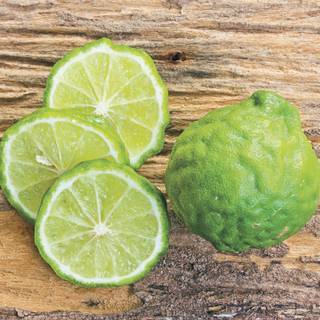 Citrus Kieffer Lime Image