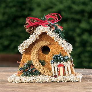 Winter Birdseed Chalet