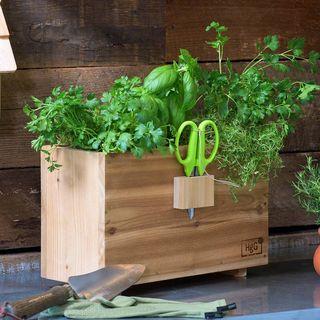 Harvest Window Box