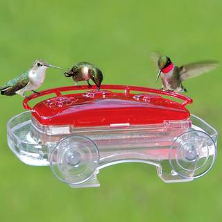 Jewel Box Hummingbird Feeder