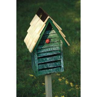 Green LadyBug Loft