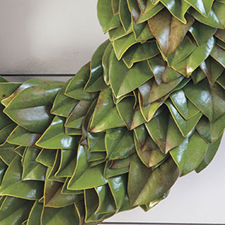 Magnolia Leaf Wreath 24-inch