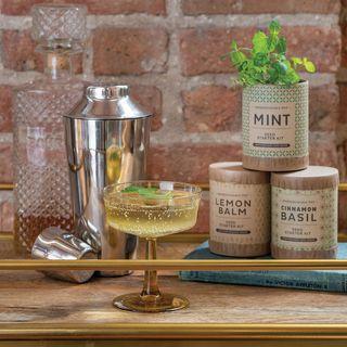 Cocktail Garden Jar Gift Set