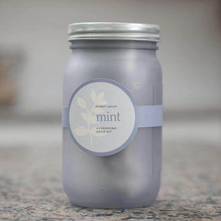 Garden Jar - Mint Image