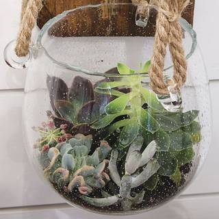 Blown Glass Planter with Rope
