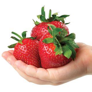 Park's Whopper Strawberry