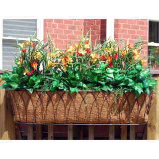 Nelumbo Window Box