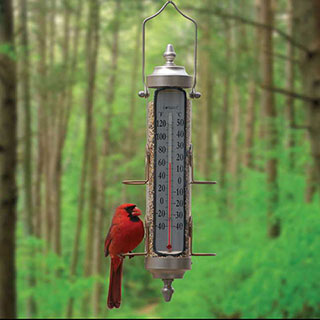 Bird Feeder/Thermometer