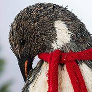 Happy Holidays Penguins