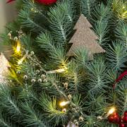 Home For Christmas Tree