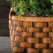 Mixed Herb Garden in Honey & Chocolate Basket