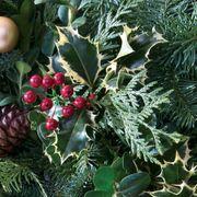 24-Inch Noble Fir Wreath