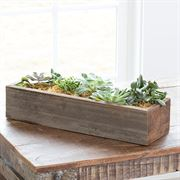 Succulent Garden Trough (Large)