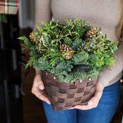 Winter has Come Basket Centerpiece