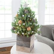 Cozy Christmas Tree - White Star