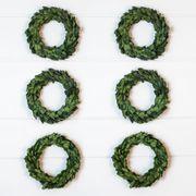 Mini Preserved Boxwood Wreaths
