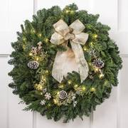 24-inch Snowfall Splendor Evergreen Wreath with Lights