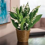 Joyful Lily of the Valley Thumb