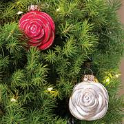 Jackson & Perkins Blooming Roses Tree Alternate Image 1