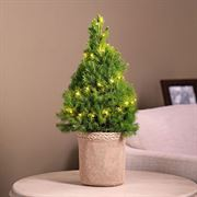 DIY Tree Thumb