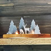 Modern Nature Woodland Scene - Medium