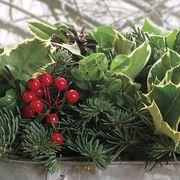 Berries & Boughs Vintage Caddy
