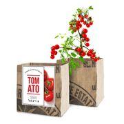 Tomato Vegetable Garden Grow Kit