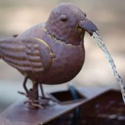 Little Bird Fountain