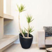Modesto 20-inch Round Planter - Black