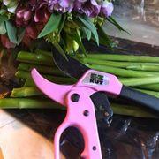 EZ  KUT  Prunners - Pink