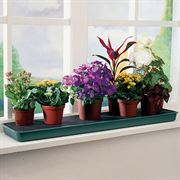Windowsill Plant Tray