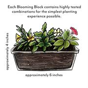 Blooming Block Kwik Kombos™ Cabrio™ Ride Along™ Alternate Image 5