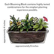 Blooming Block Kwik Kombos™ Wine Down™ Alternate Image 5
