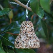 Bugs, Nuts & Fruit Birdseed Bell Thumb