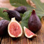 Ficus 'Violette de Bordeaux' Fig Thumb