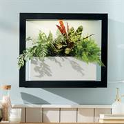 Modern Sprout Smart Growframe Thumb