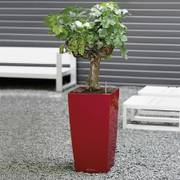 Lechuza Scarlet Red 22 inch All in One Cubico Self Watering Planter