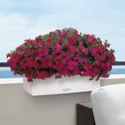 Lechuza White 20 inch All in One Balconera Cottage Self Watering Planter