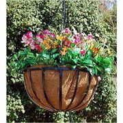 14 inch Newport Hanging Basket