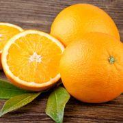 Trovita Orange Tree