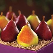 Comice & Rogue Red Pear Fruit Gift Set Mix, 5 lbs.