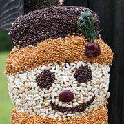 Snowman Birdseed Ornament