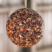 Christmas Birdseed Ornaments