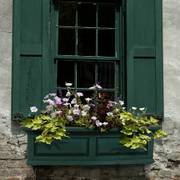 Nantucket Window Box-Green