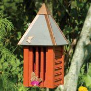 Flutterbye Butterfly House