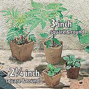 Round Jiffy Pots