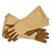 Jackson & Perkins Rose Gloves Alternate Image 1
