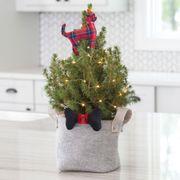Animal Lovers Christmas Trees
