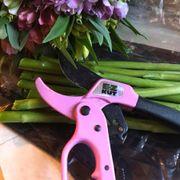 EZ KUT Pruners - Pink