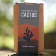 Terracotta Grow Pot Plant Kits Alternate Image 2